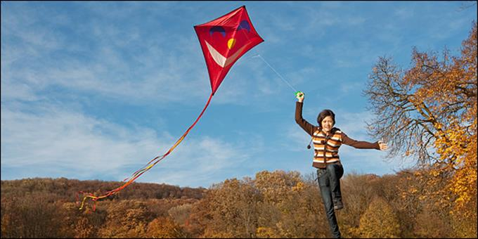 450294-kite_flying600_152498_399d35